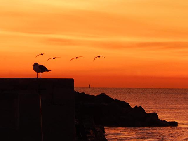 sunrise_in_pedro_160127