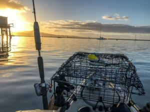 HMB crabbing