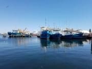 Fremantle quayside