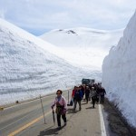 Tateyama Kurobe Alpine Route: Winter Wonderland in Spring
