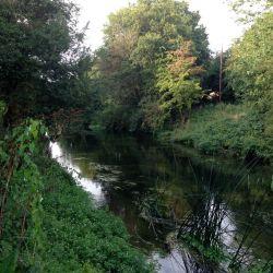 Fray's River