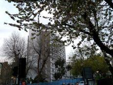 Vernon Square