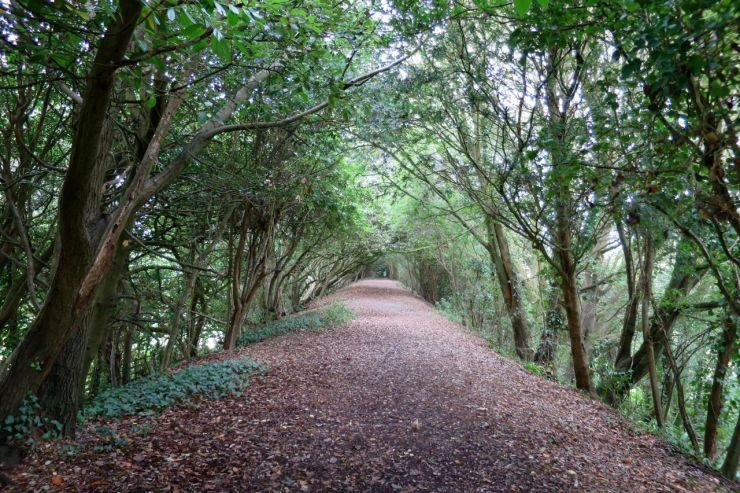 Hollow Way Rock Park Barnstaple