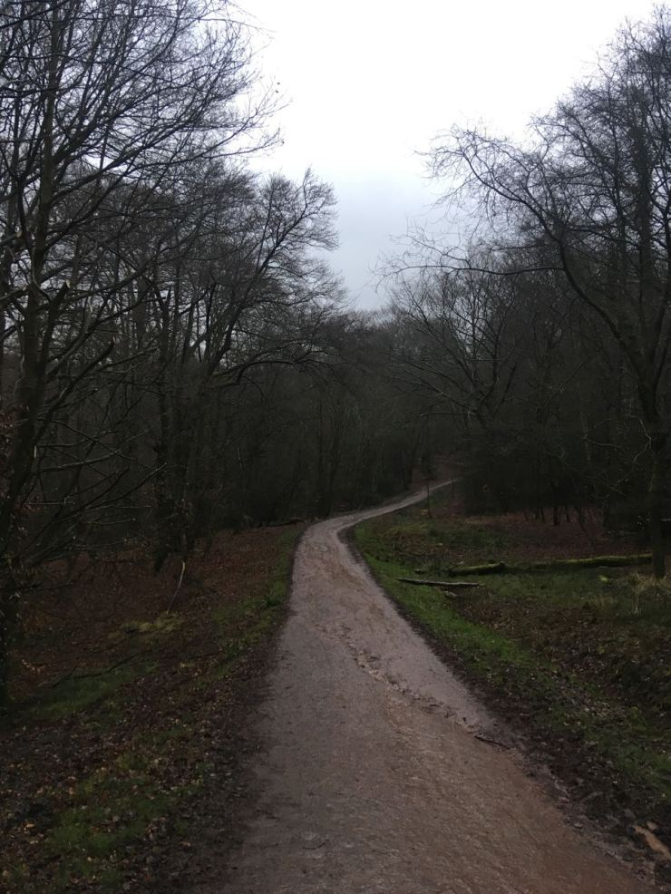 Epping Forest path