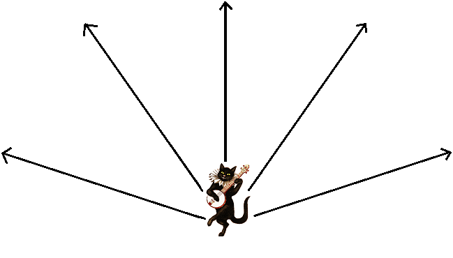ray diagram of light coming from a cat