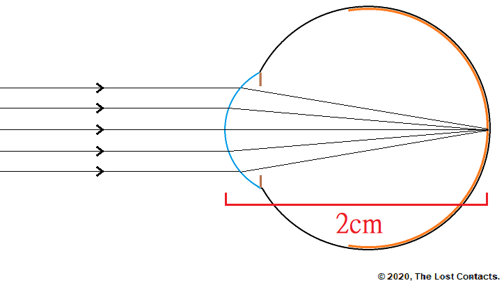 Ray Diagram of The Emmetropic Eye with focal distance