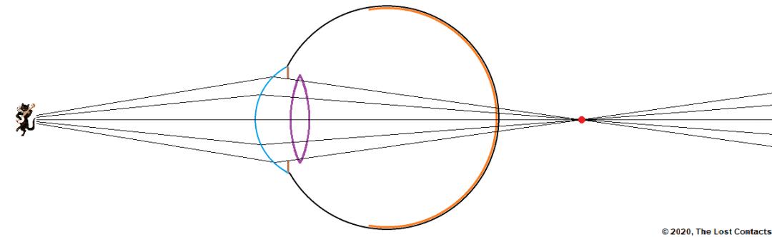Eye Looking at Near Object
