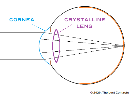Ray Diagram of the eye with labelled cornea and crystalline lens