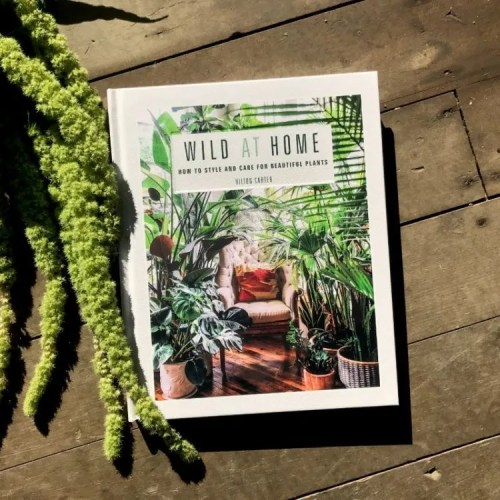 Wild at Home Book Front Cover