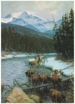 Walking Coyote and Buffalo Orphan