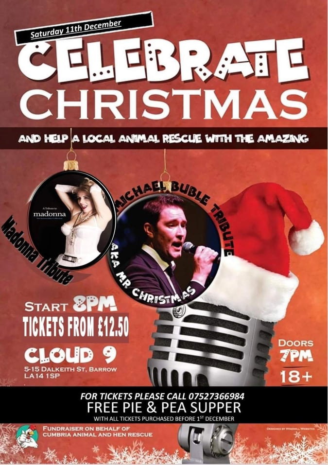 Celebrate Christmas Fundraiser with Michael Buble and Madonna Tribute Acts