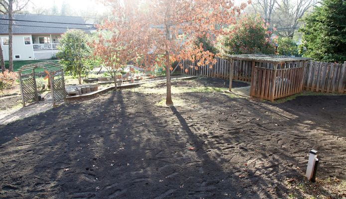 New soil and irrigation in the backyard