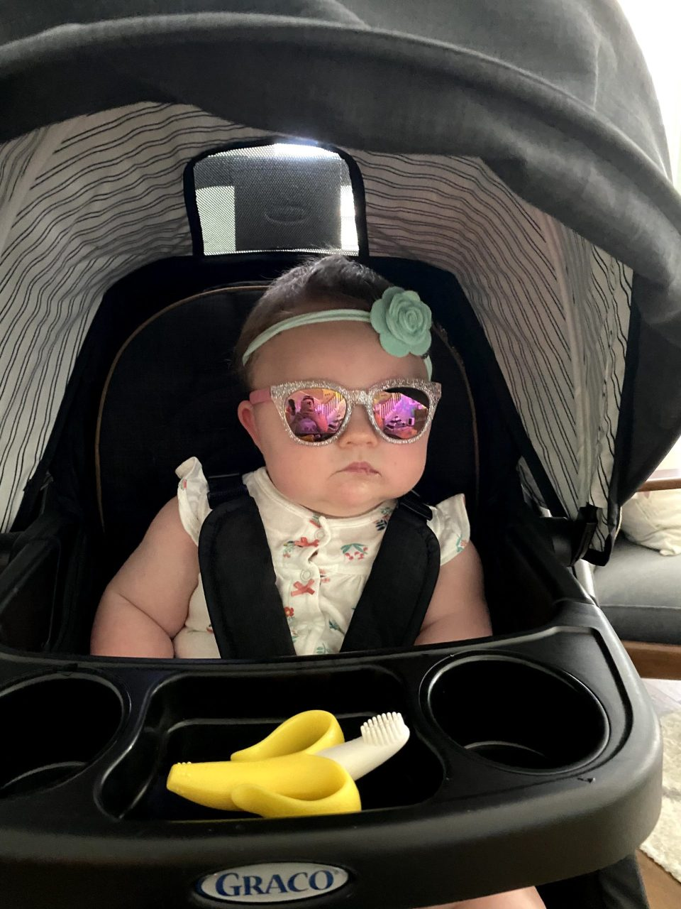 Lily is too cool