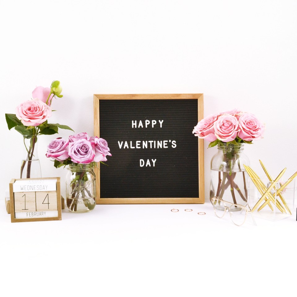 My Favorite Valentine's Day Blog Posts: Single, Taken, Hopelessly Romantic? Read More for the Cutest V-day ideas!