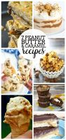 7 Delicious Peanut Butter and Caramel recipes you won't want to miss!! These dessert recipes will be a huge crowd pleaser! | The Love Nerds