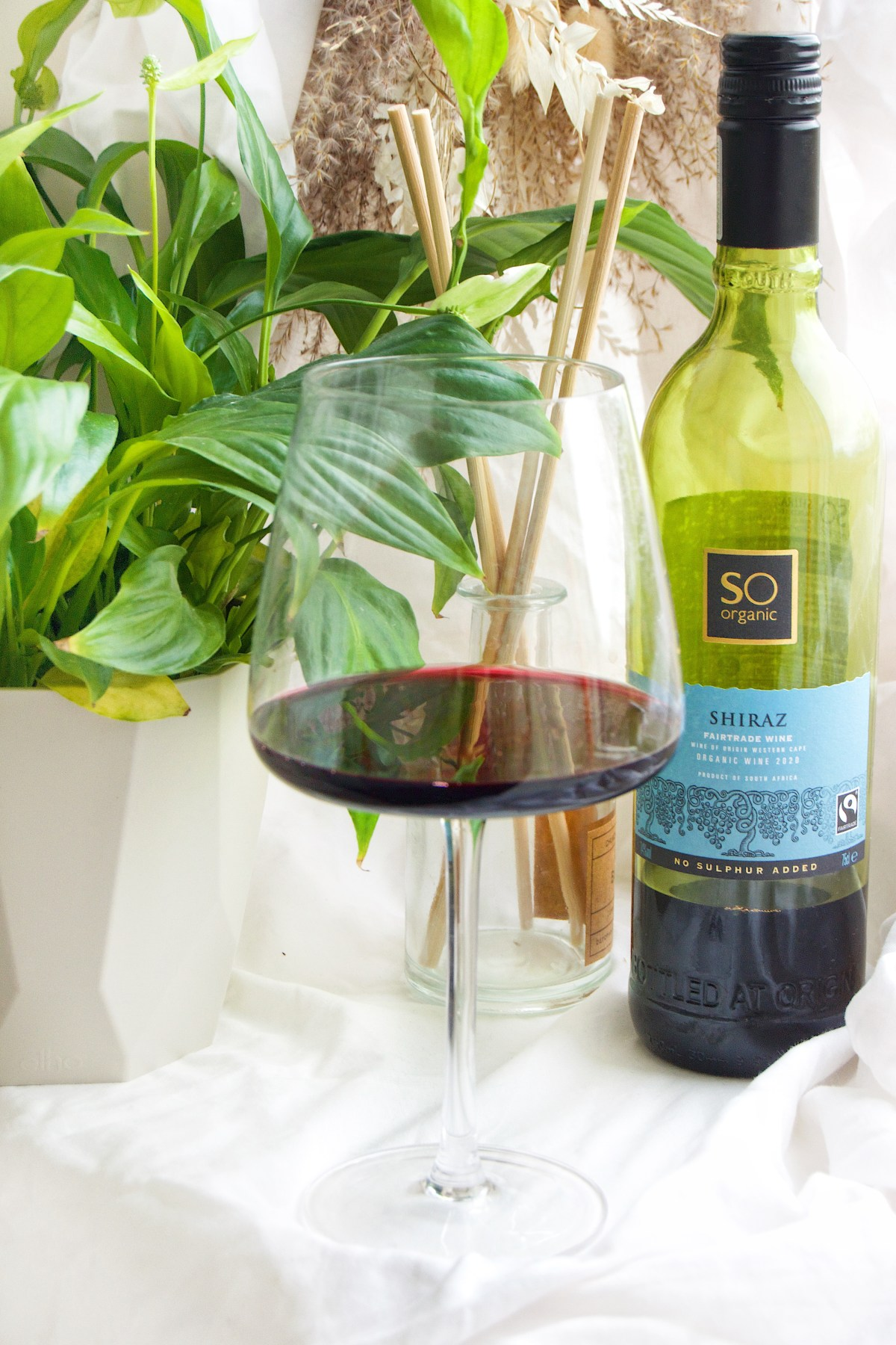 Glass of red wine, with wine bottle in background and a green plant.