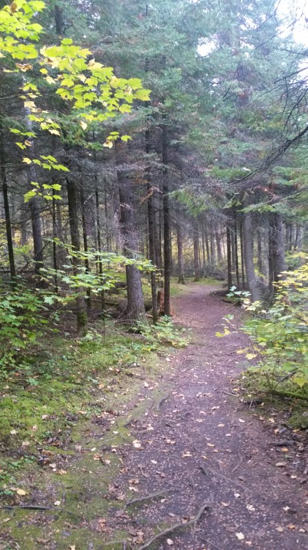 Seeing Canada: Nopiming Provincial Park