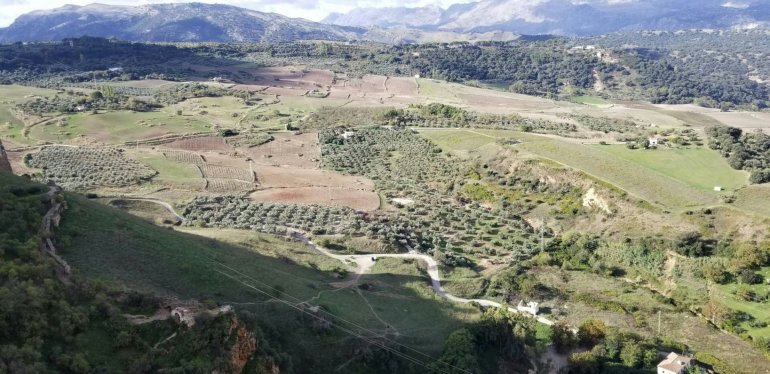 Why you should go to Ronda