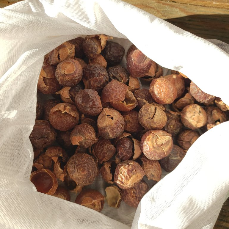How to use soap nuts for your laundry and dishes | Luxuriously Thrifty