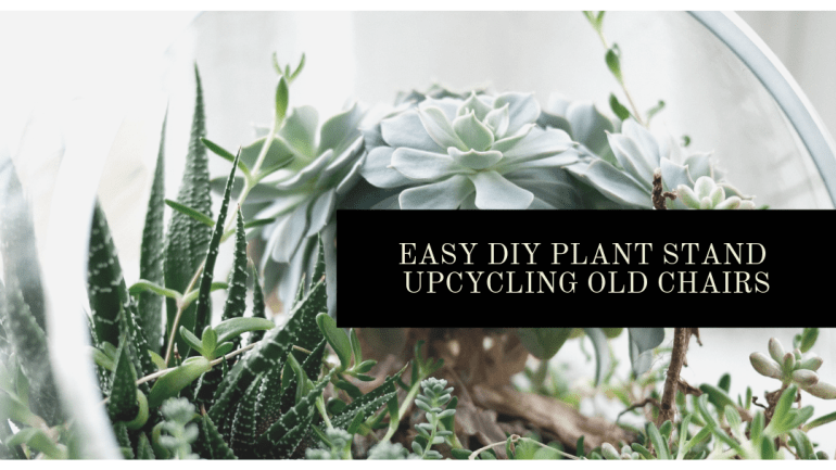 How to turn an old dining room chair into a super adorable plant stand | Luxuriously Thrifty