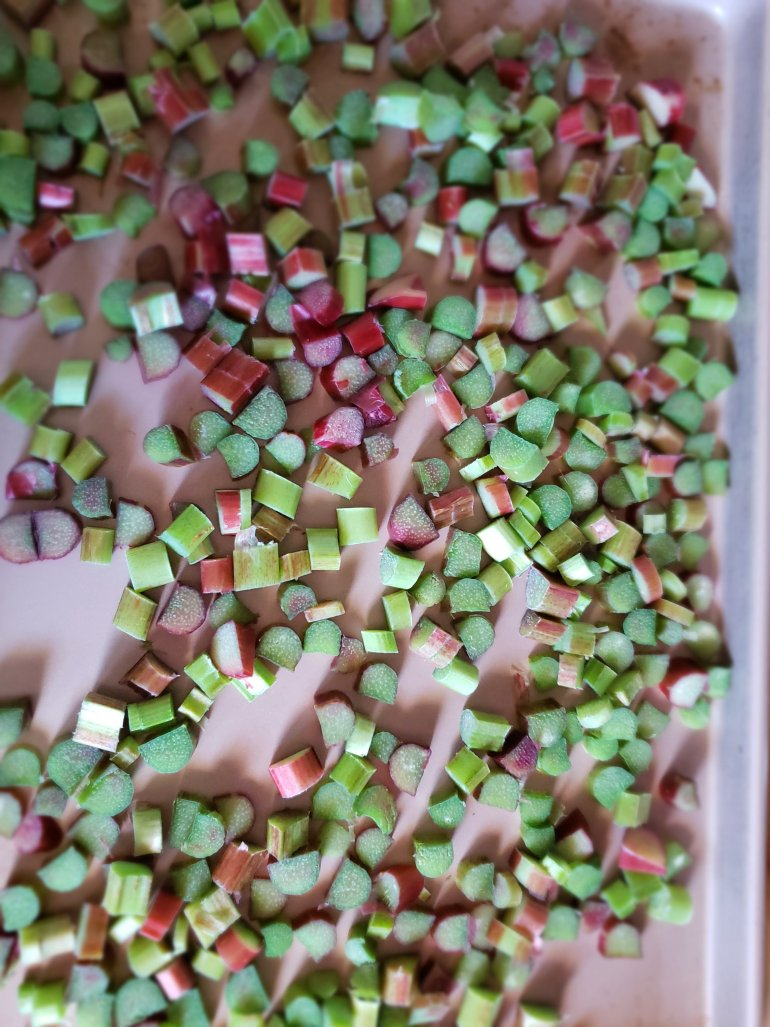 Freezing Rhubarb. How to preserve rhubarb | Luxuriously Thrifty