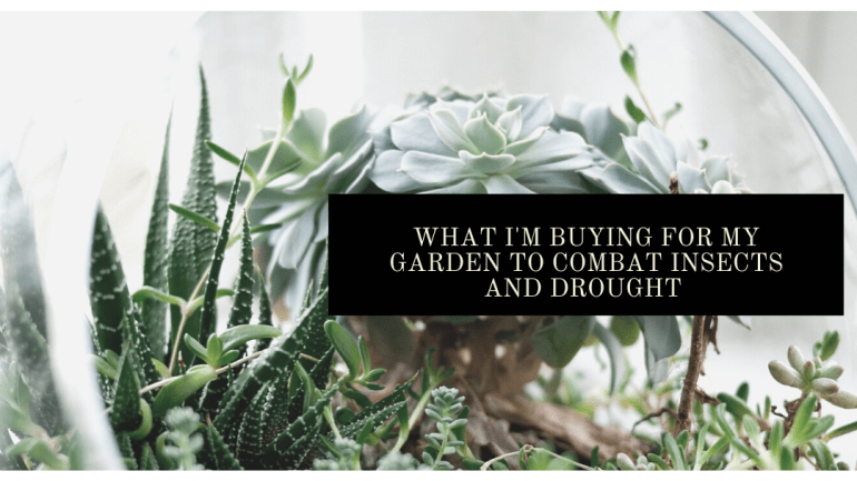 What I'm buying to combat drought and insects this year for my garden | Luxuriously Thrifty