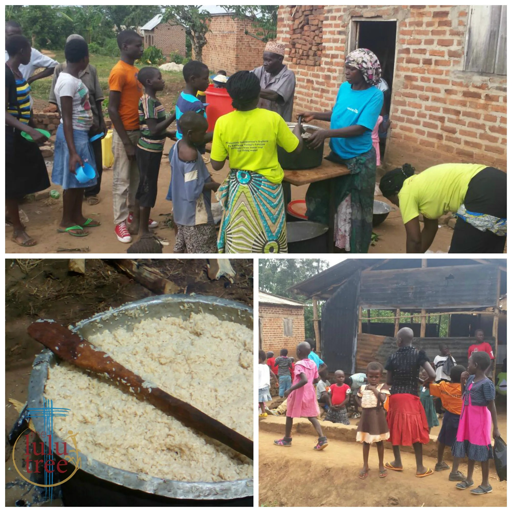 food for thought updates from uganda and sierra leone the lulu tree