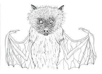 Bat-1024x746