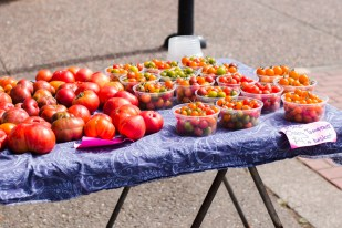 Assortment of tomatoes from one of the stands. | Photo by Lauren Shea