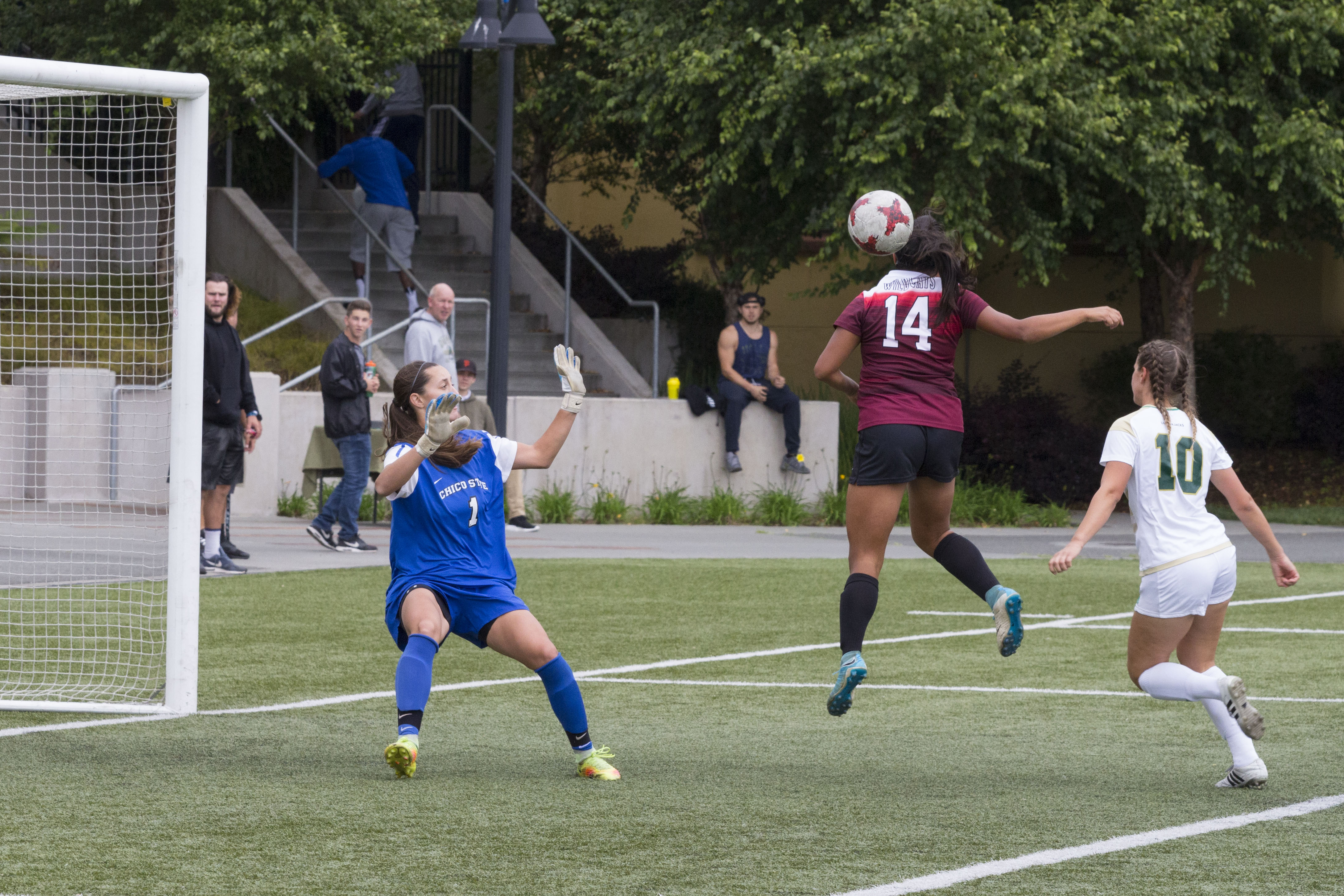 Brenna Meier (#1) Protects the goal as Jazmine Carranza takes a header while defending against HSU player Jacquelyn Dompier. | Photo by Ian Benjamin Finnegan Thompson