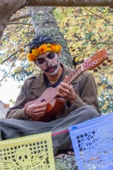 Octavio Acosta jamming out in a tree at the Dia De Los Muertos festival in front of the multicultural center at HSU.