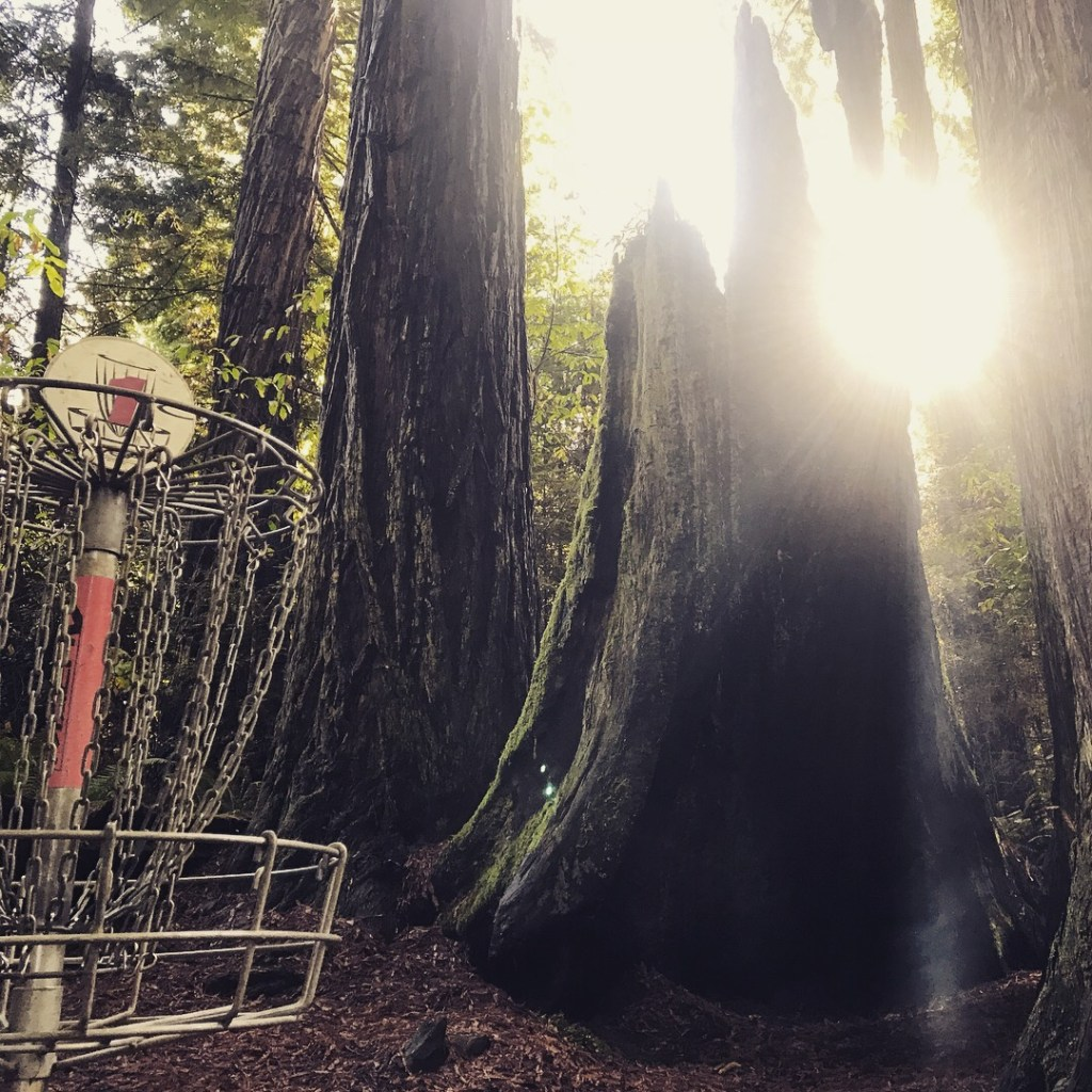 Redwood Curtain Is Diamond in the Rough