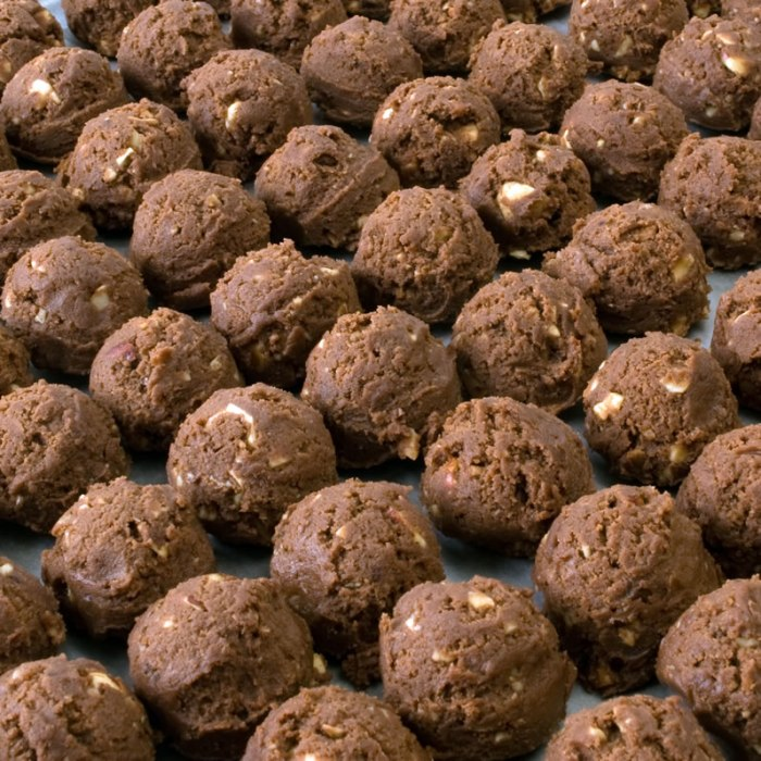 Mocha Java Hazelnut Cookie Balls