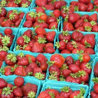 Fresh Strawberry Roundup