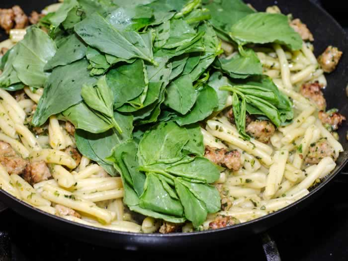 Adding Fava Bean Greens to Strozzapreti Pasta with Fava Bean Greens Pesto, Spicy Italian Sausage & Toasted Walnuts