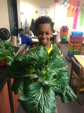boy with greens_Action for Healthy Kids