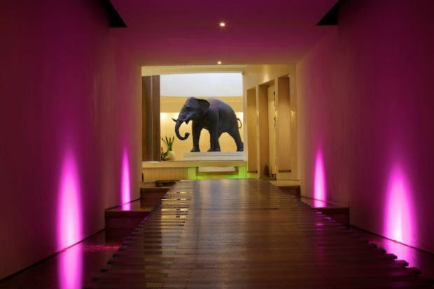Seaham_Hall_Spa_Elephant