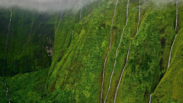 WEEPING WALL, HAWAII, USA