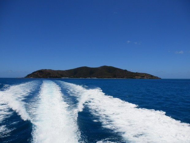 LEAVING HAYMAN ISLAND BY LAUNCH
