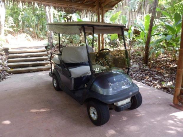 GUESTS GET THEIR OWN BUGGY