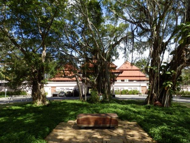 COURTYARD WITH BANYAN TREES