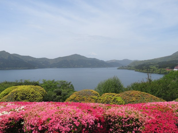 FUJI-HAKONE-IZU NATIONAL PARK