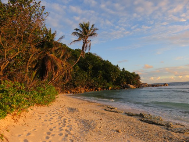 GRAND' ANSE BEACH AT SUNSET