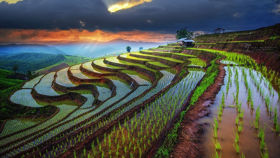Top 10 best things to see & do in Thailand - The Luxury ...