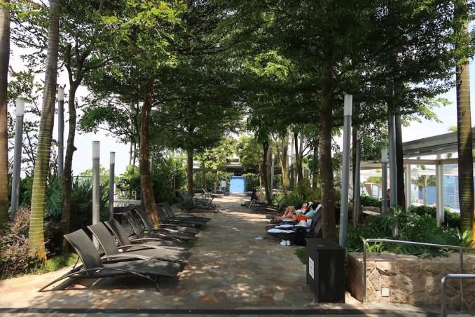 MARINA BAY SANDS: SANDS SKYPARK - FOREST
