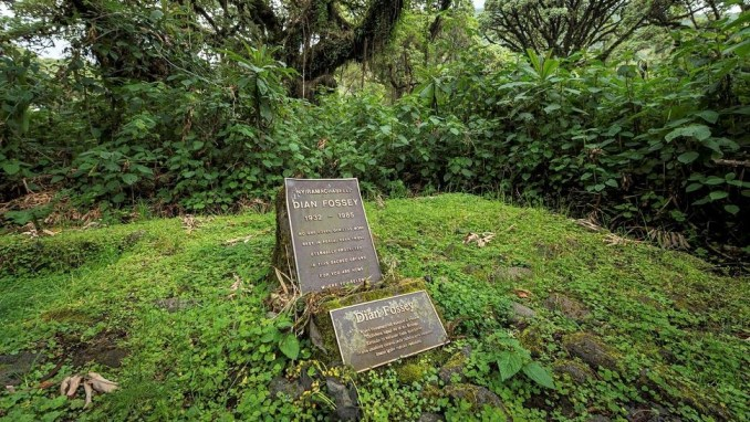 HIKE TO DIAN FOSSEY'S TOMB