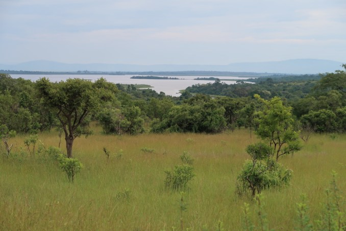 SAFARI AT AKAGERA NATIONAL PARK