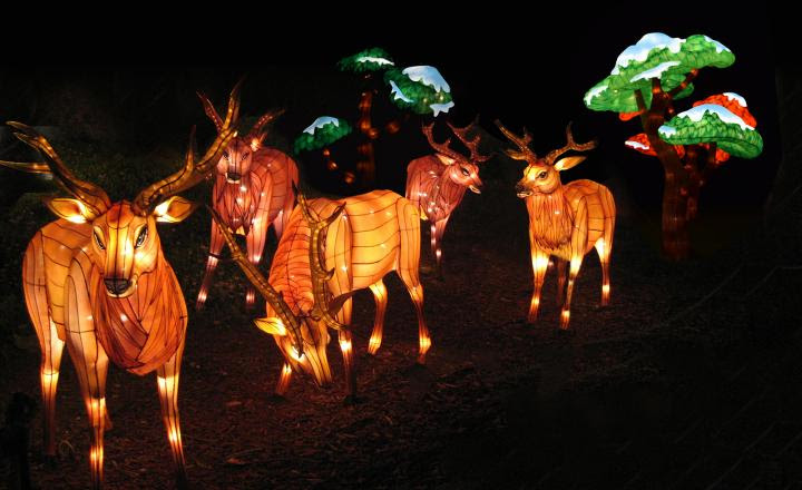 Chinese Festival of Lights at the Nashville Zoo will end Feb. 2