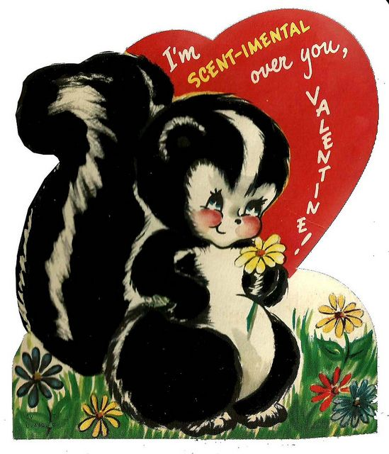 Just in time for Valentine's Day, skunk mating season arrives