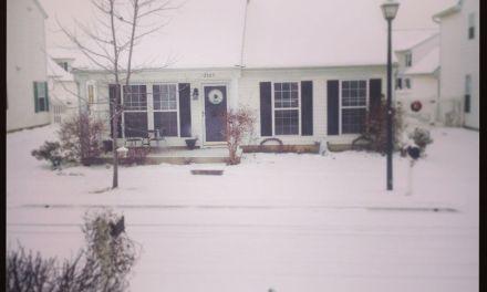 Let it snow!I